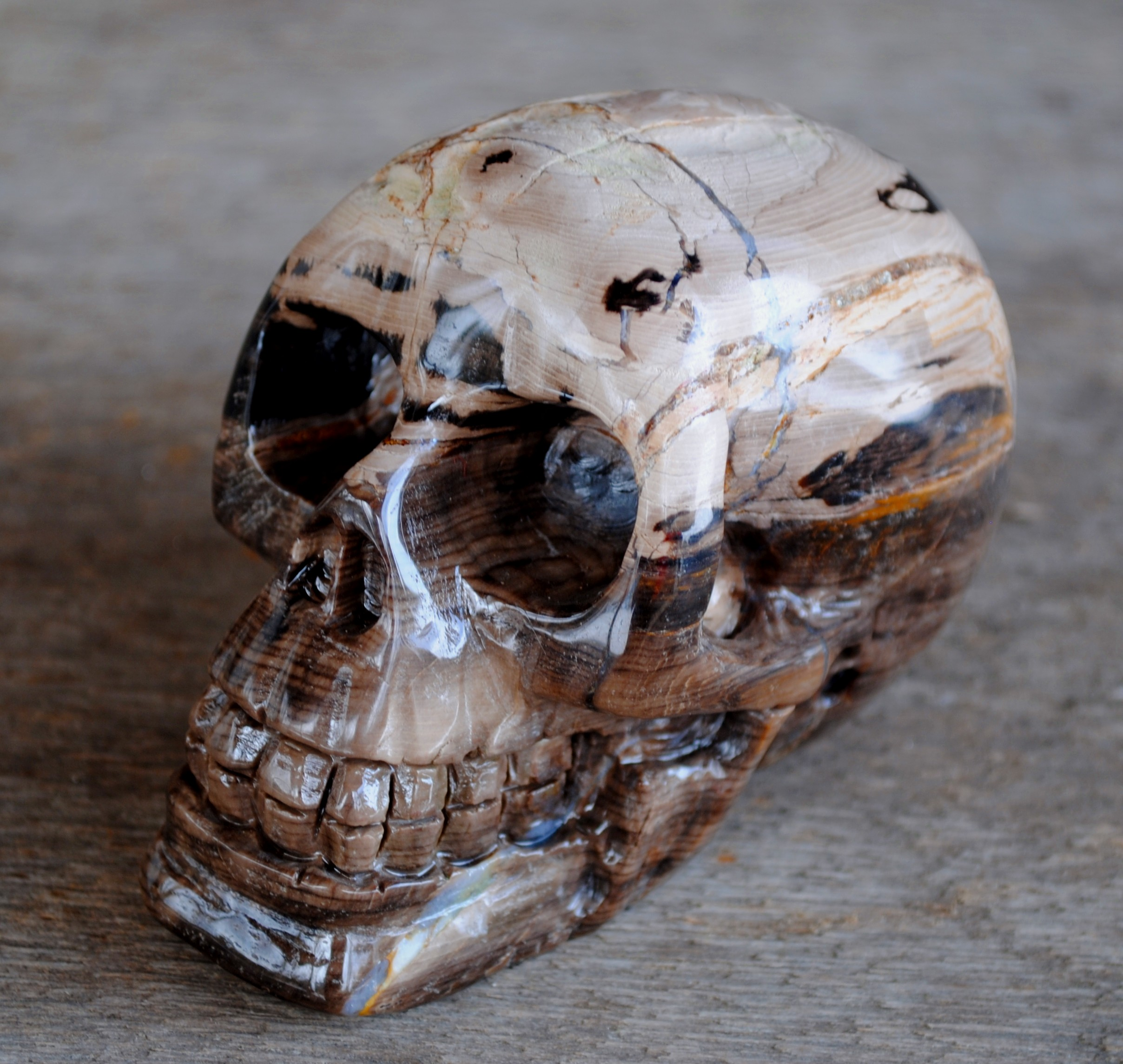 Human skull natural petrified wood carved by zhenfeng xu