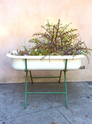 Vintage Trough Sink : vintage re-purposed vintage trough sink planter - For Sale