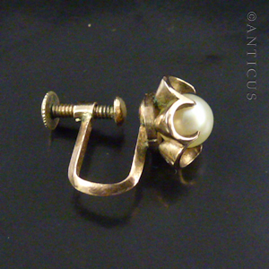 70147ce0a Pair of 10ct Gold and Pearl Screw Back Earrings. (C15100) For Sale ...