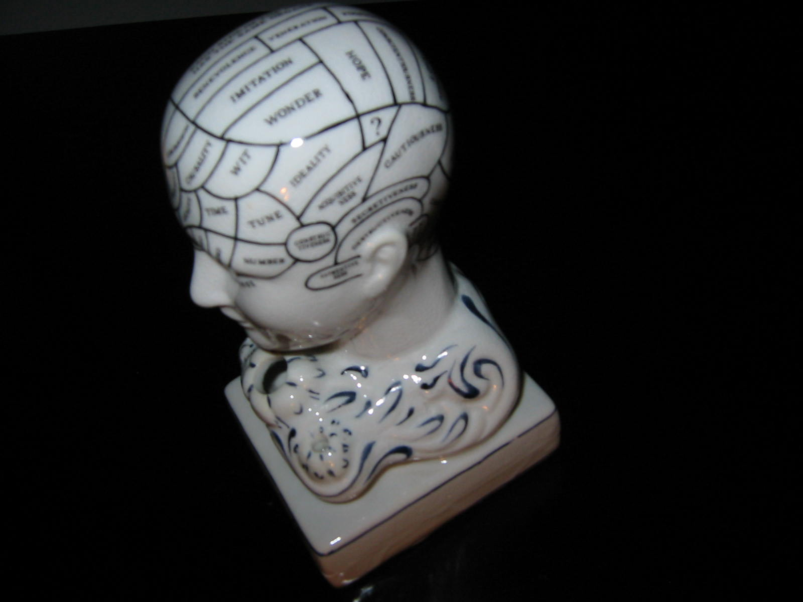 Creswell porcelain anatomy bust for sale classifieds - Find porcelain accessory authentic ...