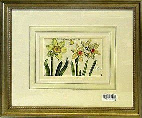 19th century set of eight framed english prints of botanicals framed dimensions are 16 h x 19 w