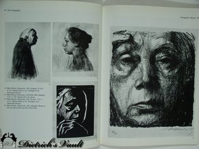 Lithography and Silkscreen Art and Technique For Sale | Antiques ...