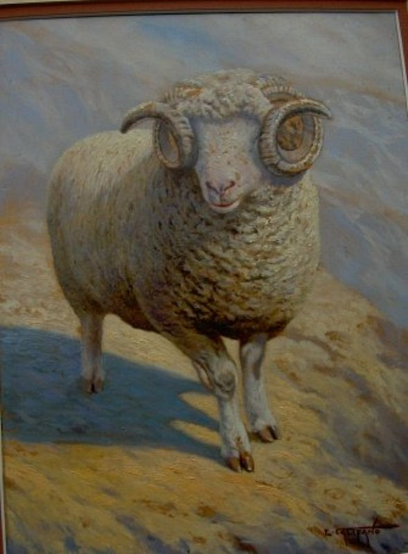 Oil Painting On Canvas Of Ram By Eugene Califano For Sale