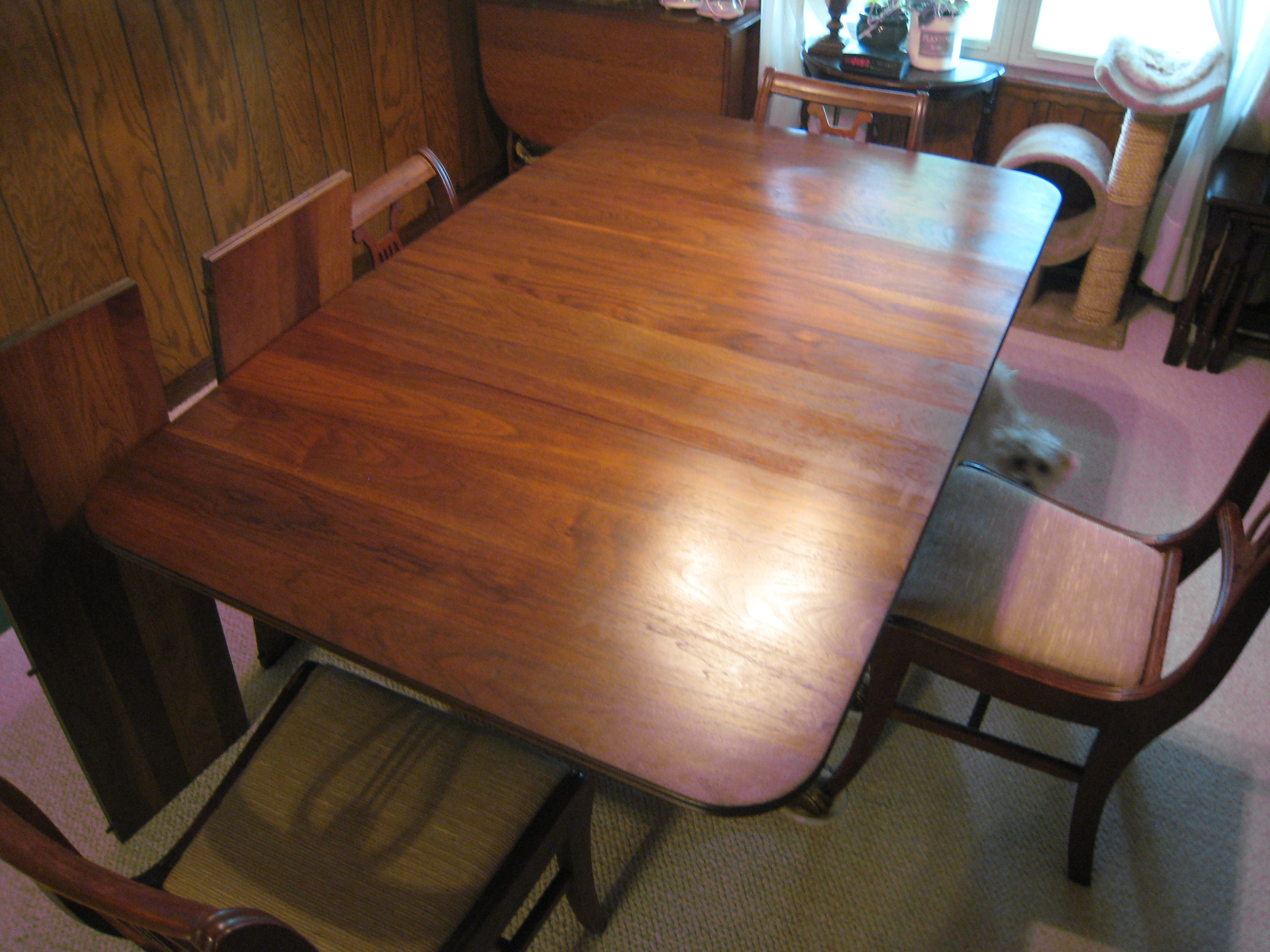 Banded Mahogany Duncan Phyfe Style Dining Table W Brass Claw Feet