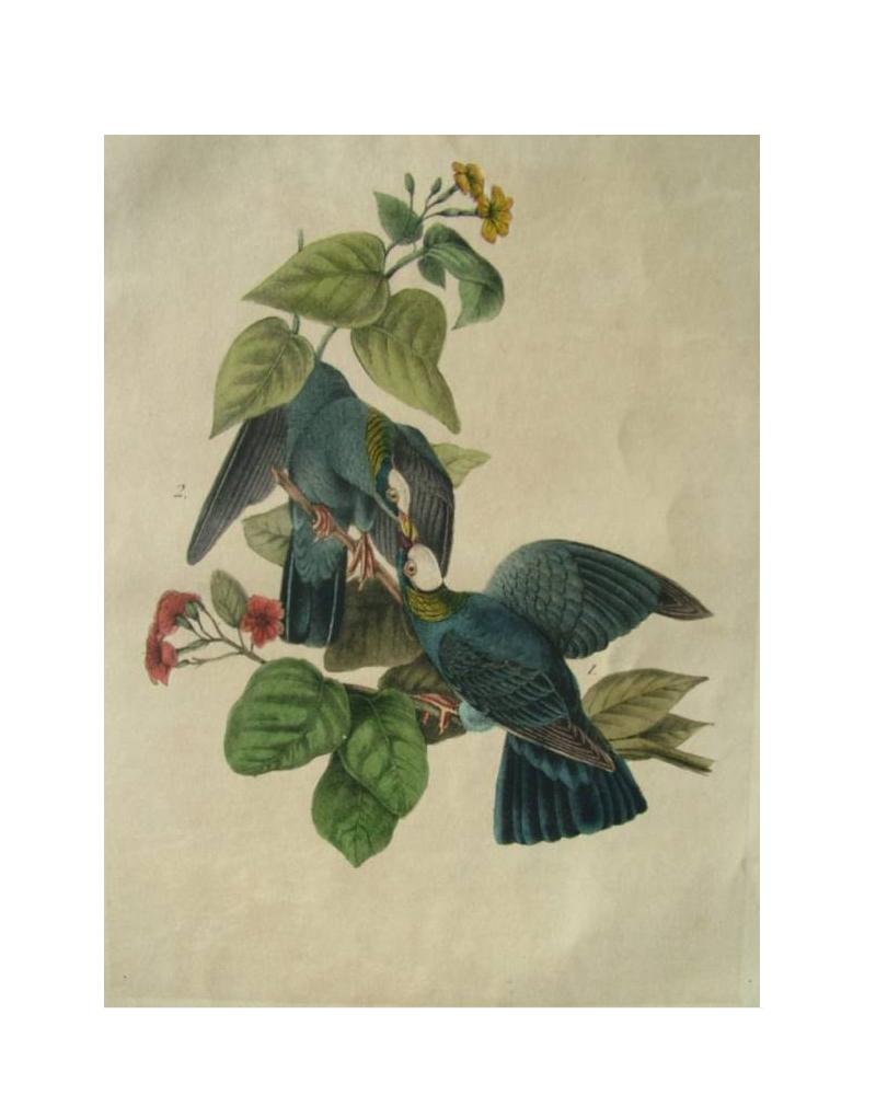 Antiques » Art (paintings