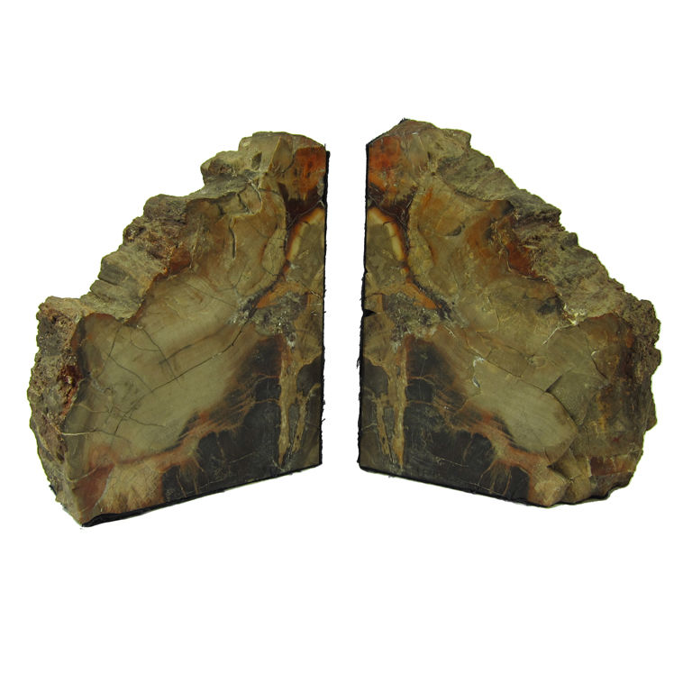 Pair of polished petrified wood geode fossil bookends for sale classifieds - Geode bookends ...