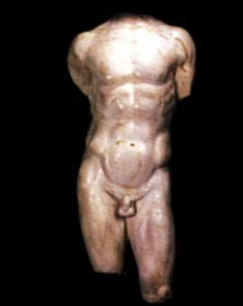 human body male Nude