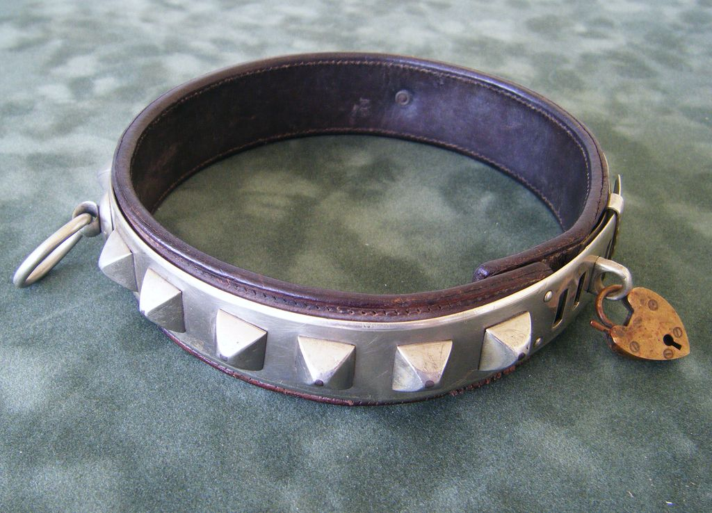 The late 19C silvered metal dog collar measures about 5 1 ...
